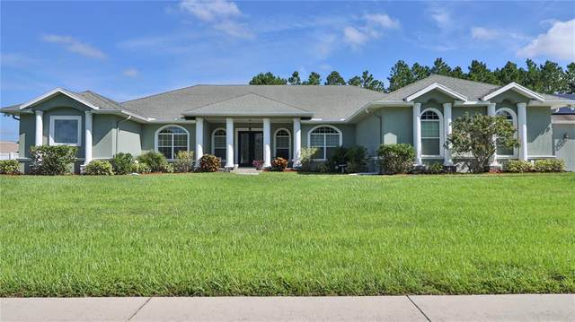 13208 Jaudon Ranch Road, Dover, FL 33527 (MLS #T3329903) :: Zarghami Group