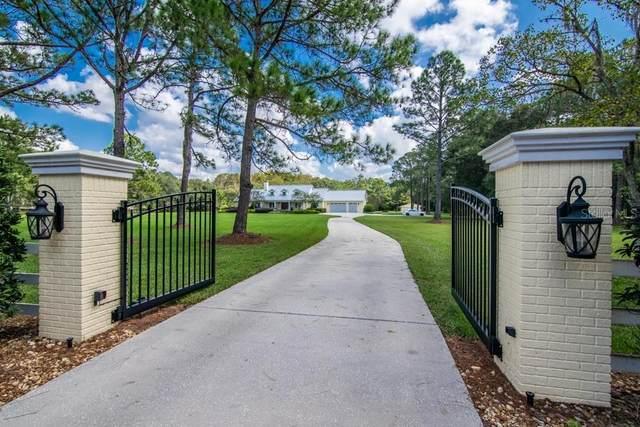 783 Ranch Road, Tarpon Springs, FL 34688 (MLS #T3329925) :: The Nathan Bangs Group
