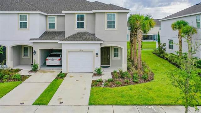 7054 Summer Holly Place, Riverview, FL 33578 (MLS #T3329930) :: Expert Advisors Group