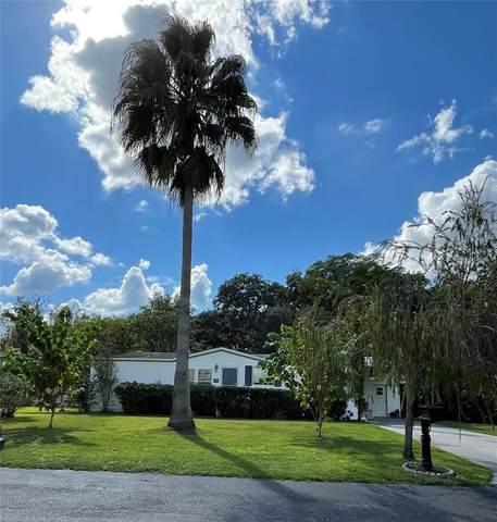 9121 Wood Terrace Drive, Tampa, FL 33637 (MLS #T3329931) :: Zarghami Group