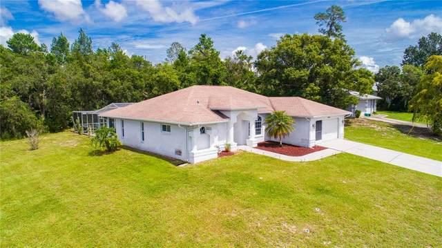 13001 Agatha Lane, Spring Hill, FL 34609 (MLS #T3329933) :: Globalwide Realty