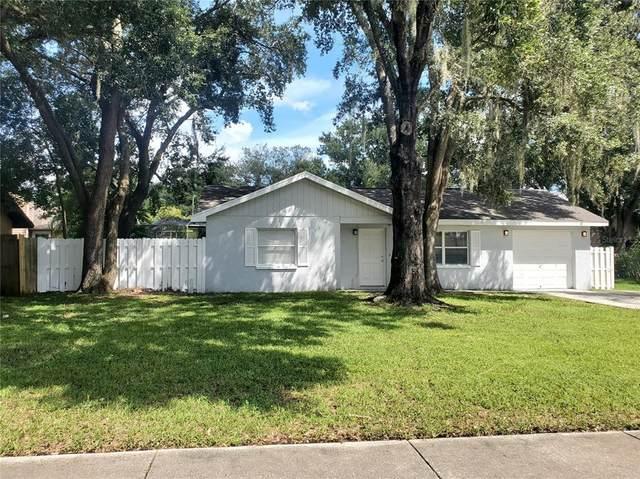 5045 Plantation Drive, Holiday, FL 34690 (MLS #T3329937) :: Carmena and Associates Realty Group