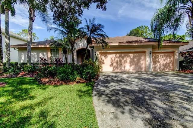 8777 Ashworth Drive, Tampa, FL 33647 (MLS #T3329944) :: The Nathan Bangs Group