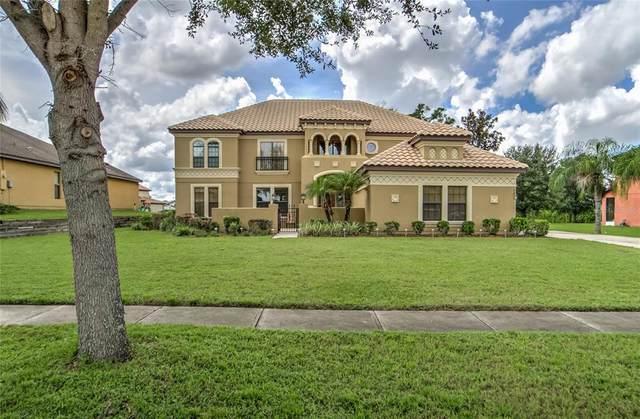 9805 Palazzo Street, Seffner, FL 33584 (MLS #T3329957) :: Everlane Realty