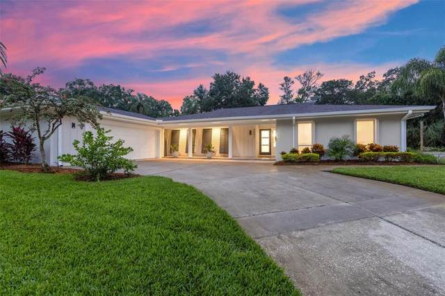 3401 Mcfarland Road, Tampa, FL 33618 (MLS #T3329967) :: Carmena and Associates Realty Group