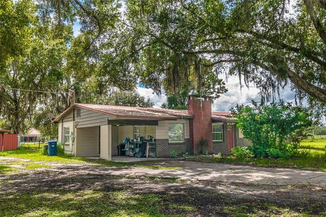4111 E Knights Griffin Road, Plant City, FL 33565 (MLS #T3329994) :: The Duncan Duo Team