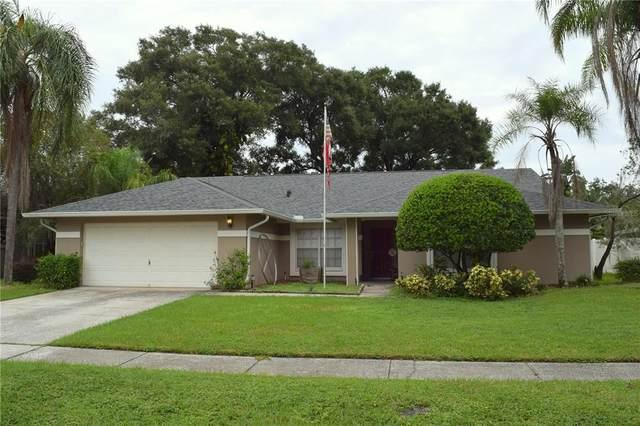 2406 Arborwood Drive, Valrico, FL 33596 (MLS #T3330017) :: Cartwright Realty