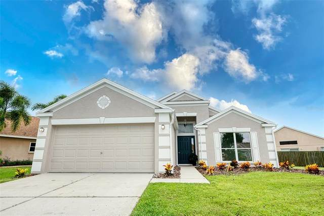 12524 Midpointe Drive, Riverview, FL 33578 (MLS #T3330028) :: Expert Advisors Group