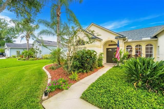 1801 Vista River Drive, Valrico, FL 33596 (MLS #T3330072) :: Zarghami Group