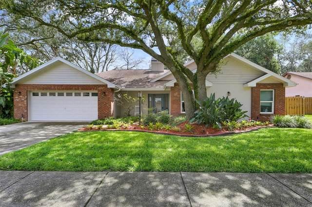 11403 E Queensway Drive, Temple Terrace, FL 33617 (MLS #T3330108) :: Zarghami Group