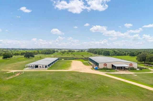 40812 Grays Airport Road, Lady Lake, FL 32159 (MLS #T3330115) :: Bustamante Real Estate