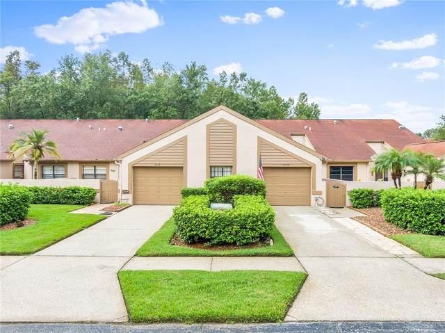 4036 Mermoor Court, Palm Harbor, FL 34685 (MLS #T3330118) :: Southern Associates Realty LLC