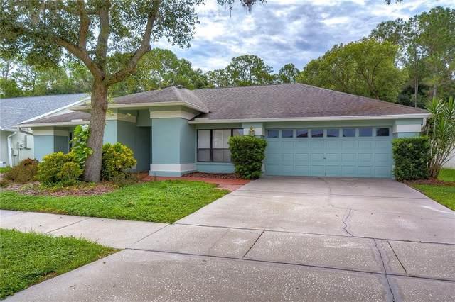 9519 Pebble Glen Avenue, Tampa, FL 33647 (MLS #T3330119) :: The Light Team