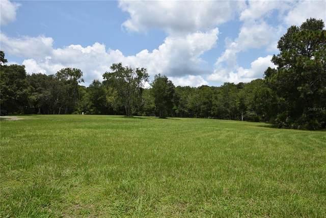 Regal Oaks, Lutz, FL 33559 (MLS #T3330129) :: The Nathan Bangs Group