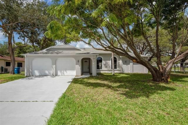 4435 Gaston Street, Spring Hill, FL 34607 (MLS #T3330139) :: Zarghami Group
