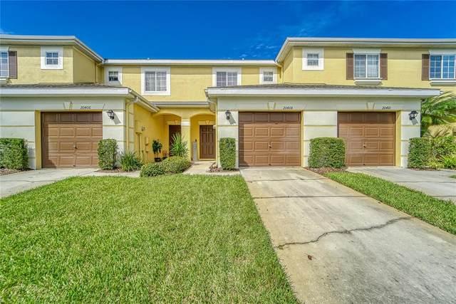 20408 Needletree Drive, Tampa, FL 33647 (MLS #T3330194) :: The Light Team