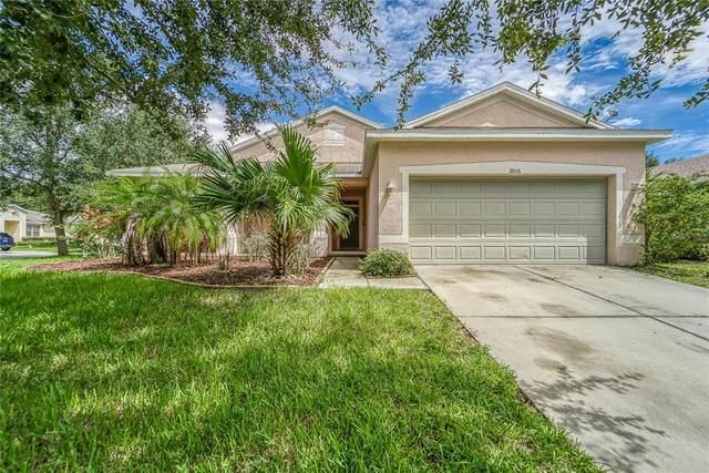 11806 Holly Crest Lane, Riverview, FL 33569 (MLS #T3330201) :: Zarghami Group