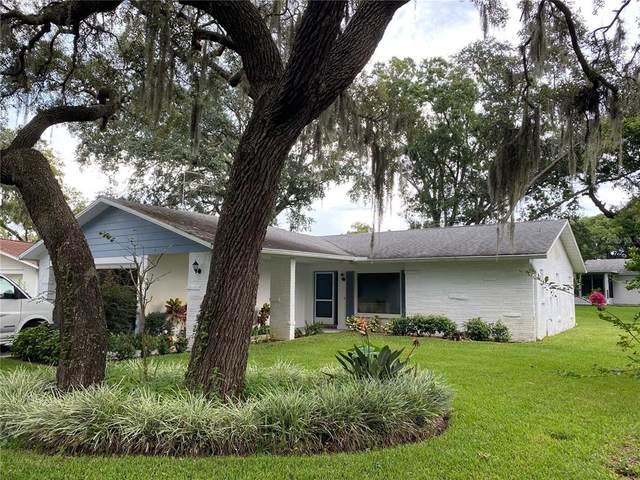 10518 Calico Loop, Port Richey, FL 34668 (MLS #T3330207) :: Vacasa Real Estate