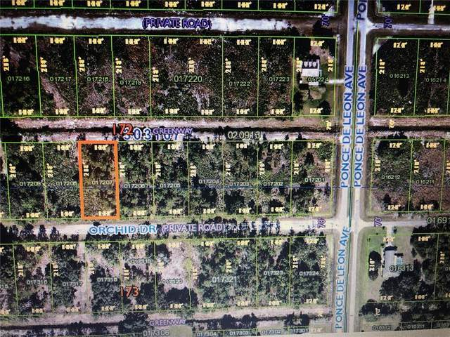 414 Orchid Drive, Indian Lake Estates, FL 33855 (MLS #T3330227) :: Sarasota Gulf Coast Realtors
