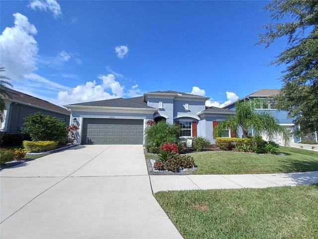 33233 Cypress Bend Drive, Wesley Chapel, FL 33545 (MLS #T3330236) :: Team Bohannon