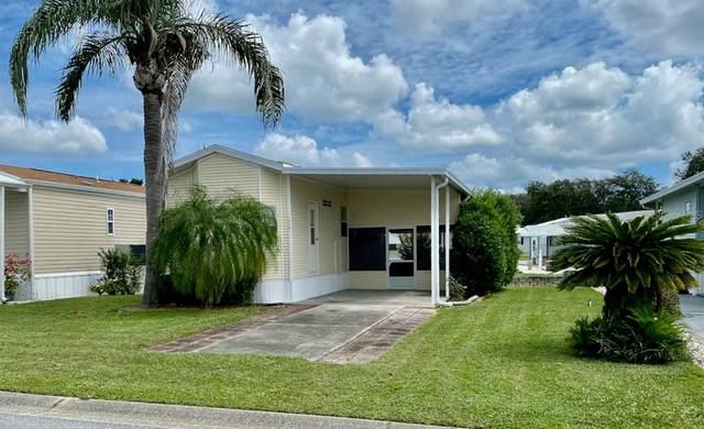 35147 Danny Drive #115, Zephyrhills, FL 33541 (MLS #T3330252) :: Sarasota Gulf Coast Realtors