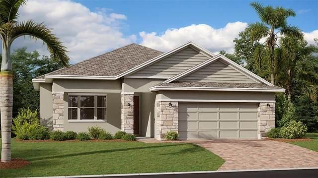 1220 Dora Parc Lane, Mount Dora, FL 32757 (MLS #T3330259) :: Bustamante Real Estate