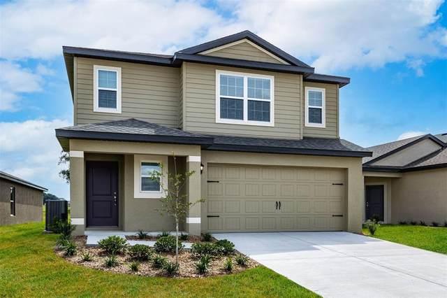 30147 Bonnie Road, Brooksville, FL 34602 (MLS #T3330262) :: Prestige Home Realty