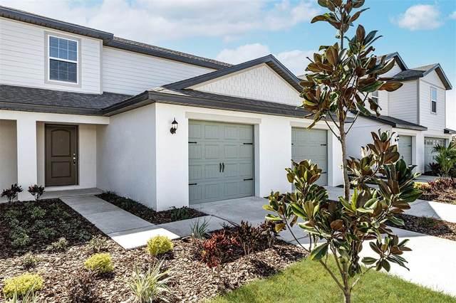 5330 Companion Lane, Tampa, FL 33619 (MLS #T3330269) :: Cartwright Realty