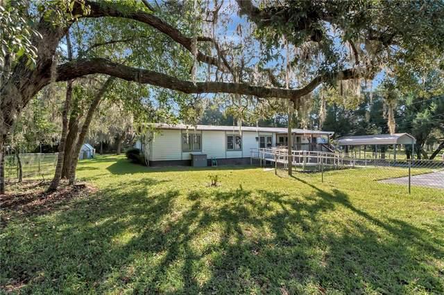 12802 Buckeye Drive, Hudson, FL 34669 (MLS #T3330274) :: The Nathan Bangs Group
