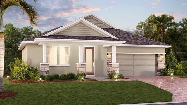 1204 Dora Parc Lane, Mount Dora, FL 32757 (MLS #T3330278) :: Bustamante Real Estate