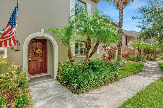 2450 Pelican Court Q101, Clearwater, FL 33762 (MLS #T3330301) :: Realty Executives