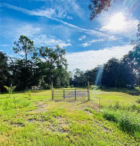 4318 Simms Road, Lakeland, FL 33810 (MLS #T3330305) :: RE/MAX Elite Realty