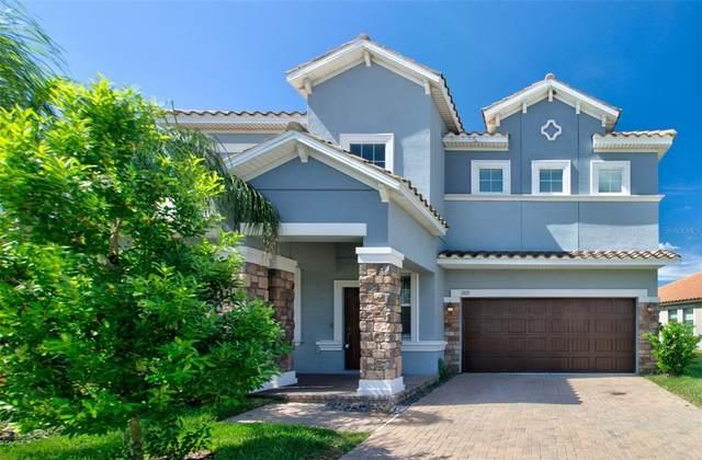 13171 Green Violet Drive, Riverview, FL 33579 (MLS #T3330307) :: Team Bohannon