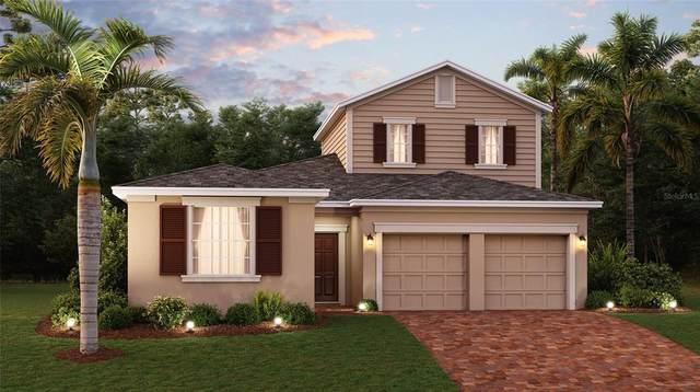 1871 Good Neighbor Loop, Kissimmee, FL 34744 (MLS #T3330333) :: Zarghami Group