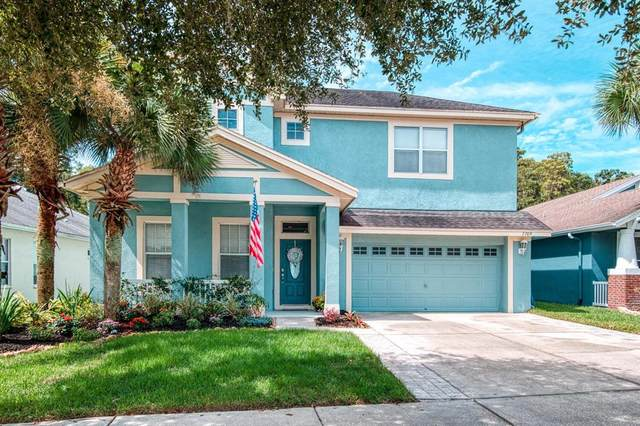 7709 Grasmere Drive, Land O Lakes, FL 34637 (MLS #T3330361) :: RE/MAX Local Expert