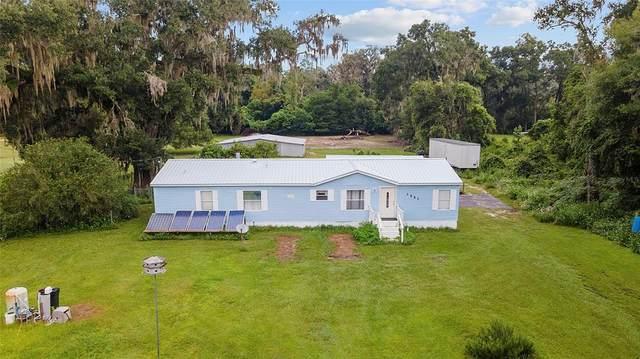 1551 NE 180TH Street, Citra, FL 32113 (MLS #T3330363) :: Vacasa Real Estate