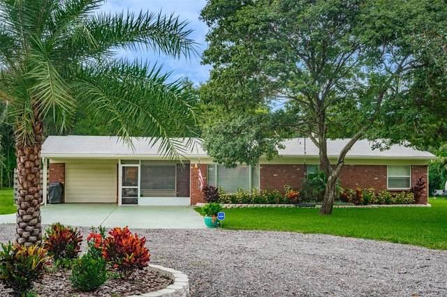 2108 Crosby Road, Valrico, FL 33594 (MLS #T3330367) :: Everlane Realty