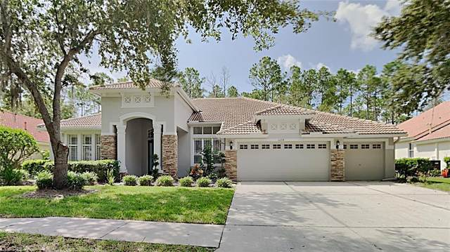 10228 Arbor Side Drive, Tampa, FL 33647 (MLS #T3330396) :: The Nathan Bangs Group