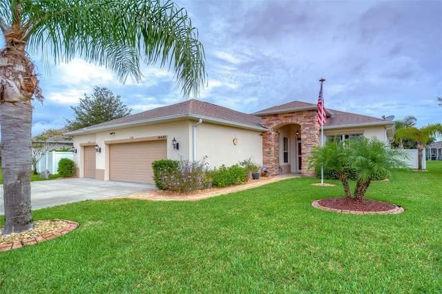 14449 Tarves Drive, Hudson, FL 34667 (MLS #T3330422) :: Pristine Properties