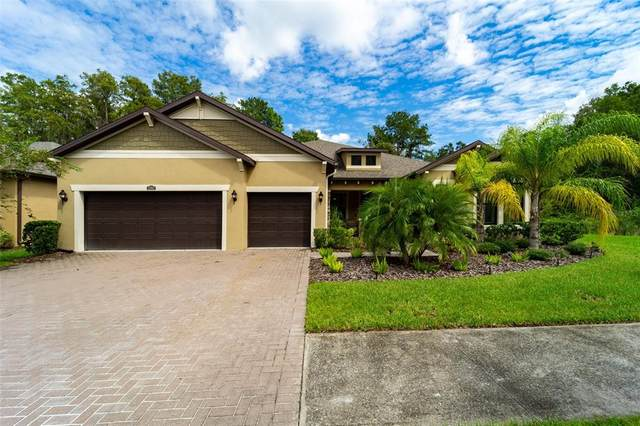 12917 Cypress Estates Place, Tampa, FL 33624 (MLS #T3330433) :: The Duncan Duo Team
