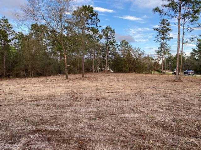 6275 W Holly Brook Lane, Dunnellon, FL 34433 (MLS #T3330440) :: Southern Associates Realty LLC