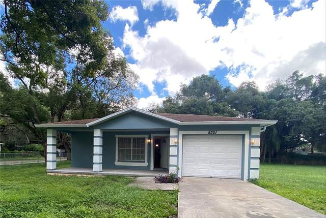 8321 N Greenwood Avenue, Tampa, FL 33617 (MLS #T3330468) :: CENTURY 21 OneBlue