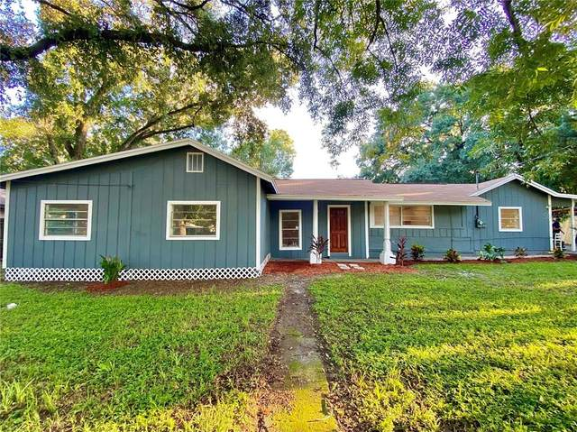 4013 Deleuil Avenue, Tampa, FL 33610 (MLS #T3330474) :: Zarghami Group