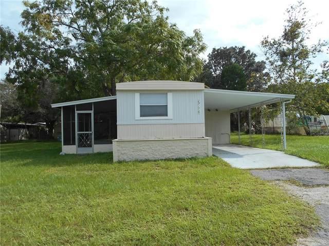 29176 Heckleman Street, Brooksville, FL 34602 (MLS #T3330491) :: Prestige Home Realty