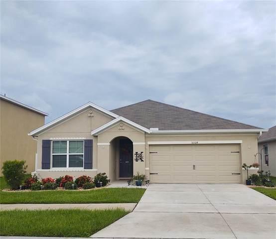 10324 Geese Trail Circle, Sun City Center, FL 33573 (MLS #T3330498) :: Zarghami Group