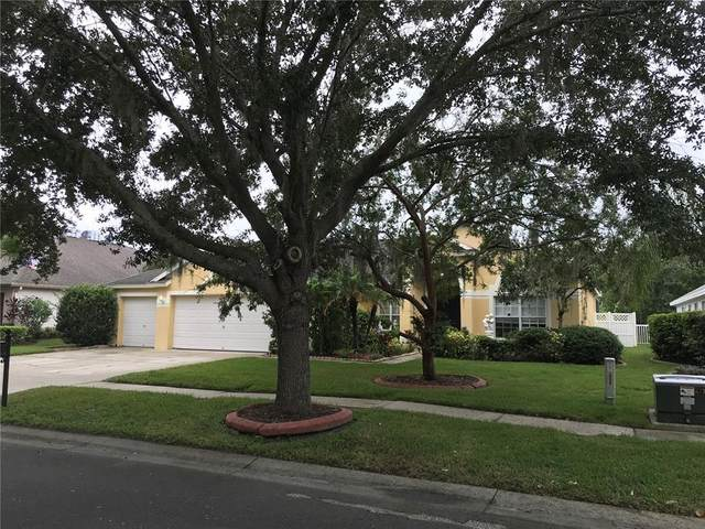 17734 Currie Ford Drive, Lutz, FL 33558 (MLS #T3330501) :: Pepine Realty