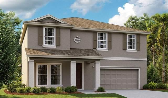 5550 Del Coronado Drive, Apollo Beach, FL 33572 (MLS #T3330566) :: Cartwright Realty