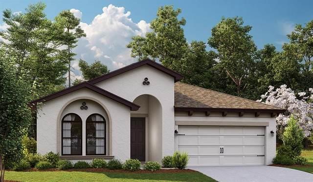 5548 Del Coronado Drive, Apollo Beach, FL 33572 (MLS #T3330568) :: Cartwright Realty