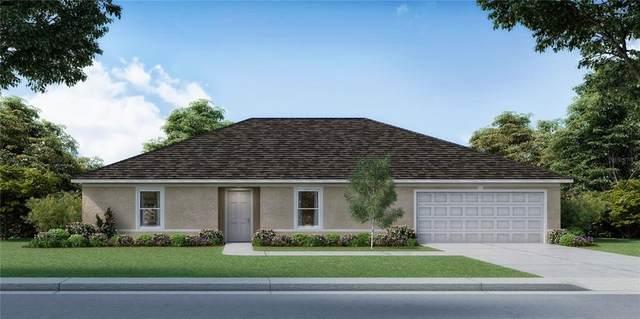 LOT 10 SW 24TH COURT Road, Ocala, FL 34473 (MLS #T3330585) :: RE/MAX Elite Realty