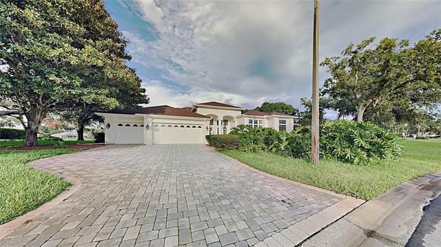 9400 Ruby Falls Court, Weeki Wachee, FL 34613 (MLS #T3330630) :: Team Turner